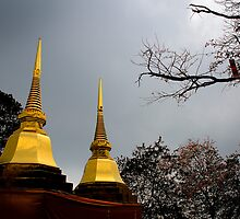 Golden Chedi at Wat Pra Doi Tung by Duane Bigsby