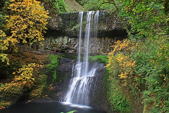 Lower South Falls, Silver Falls State Park, Oregon by DArthurBrown