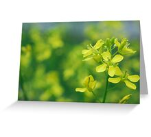 Forefront Floral Greeting Card