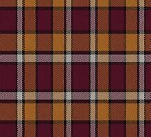 02605 Pulaski County, Arkansas E-fficial Fashion Tartan Fabric Print Iphone Case by Detnecs2013