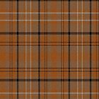 02608 Pinal County, Arizona E-fficial Fashion Tartan Fabric Print Iphone Case by Detnecs2013
