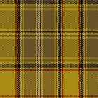 02612 Dunbarton (Quebec) District Tartan Fabric Print Iphone Case by Detnecs2013