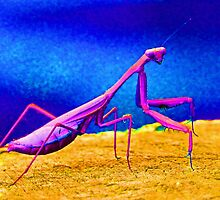 Fantasy Mantis Dance by Margaret Saheed