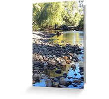 Gloucester Riverbank Greeting Card