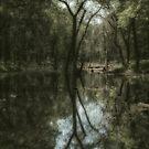 Woodland Dream by Victoria Jostes