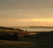 Joe Mortelliti Gallery - Last rays of evening sunlight, Lake Connewarre, Bellarine Peninsula, Victoria, Australia.  by thisisaustralia