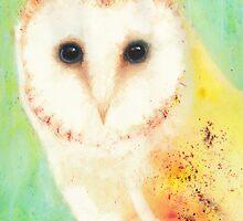 Barn Owl by Cat Gabriel