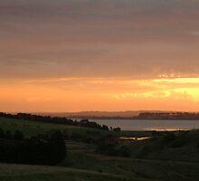 Joe Mortelliti Gallery - Sunset, Lake Connewarre, Bellarine Peninsula, Victoria, Australia. by thisisaustralia