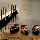 Moored by Harry Purves
