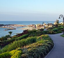 Garden Overview ~ Lyme Regis by Susie Peek