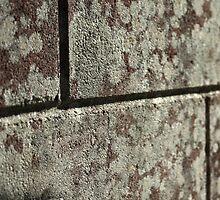 Stone Bricks by Soozi Hadj Lazib