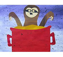 Sloth in a broth- Animal Rhymes - created from recycled math books Photographic Print