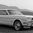 Mustang by Brett Rogers