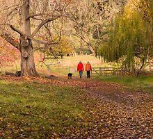 Golden Valley Tree Park, Balingup, Western Australia #5 by Elaine Teague