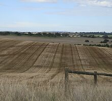 Evenly ploughed, Auburn, S.A. by elphonline