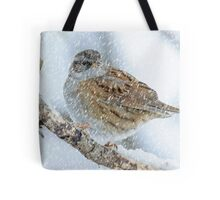 winter bird scene Tote Bag