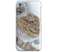 winter bird scene iPhone Case/Skin