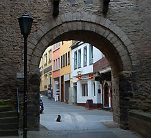 Andernach Gate by Cathy Jones