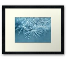 Fairy Drops Framed Print