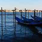 The lagoon of Venice by hans p olsen