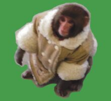 Darwin the Ikea monkey! by anthonysjb
