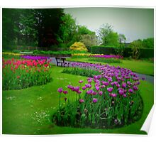 A colourful garden... Poster