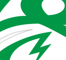 KrakkdSkullz - KS Logo - Green Sticker