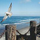 Pacific Ocean Scene by Kenneth Hoffman