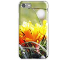 yellow  & green iPhone Case/Skin