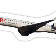 CRJ1000 Sticker