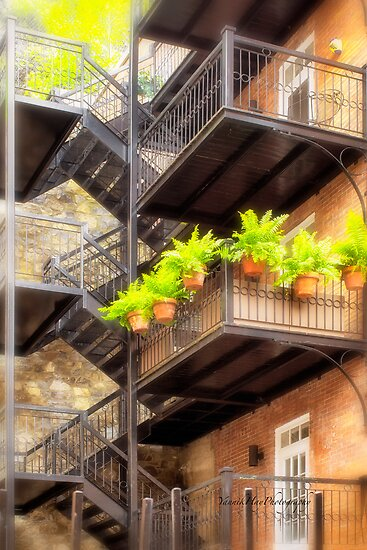 Flower Pots on Staircase by Yannik Hay