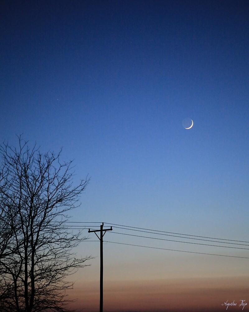 Evening Sky by Augustina Trejo