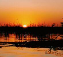 Okavango delta sunset Sticker