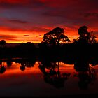 LAKEWOOD PARK SUNSET by TomBaumker