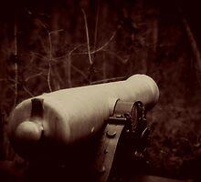 Battlefield Cannon by brianstjohn