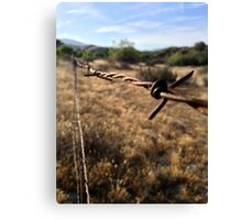 The Barbwire Canvas Print