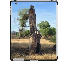 Stumpy iPad Case/Skin