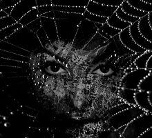 Dreams Like Silver Stars by gjameswyrick
