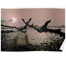 Couché de soleil Poster
