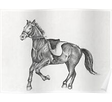 Pencil Drawing of a Running Horse Poster