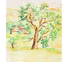 Watercolor Rural Summer Landscape Photographic Print