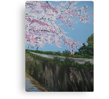 Falling Cherry Blossom in Japan - with river Canvas Print