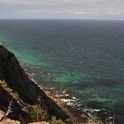 Otford Lookout, Royal National Park, Australia 2013 by muz2142