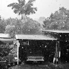 Heavy Rain Shower : Brisbane Australia. by Nick Egglington