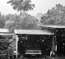 Heavy Rain Shower : Brisbane Australia. by Nick Griffin