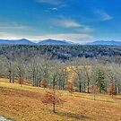 Panoramic Shot to the Side of and Behind the Biltmore Estate by RedskinzFan