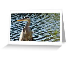 Big Blue... Greeting Card
