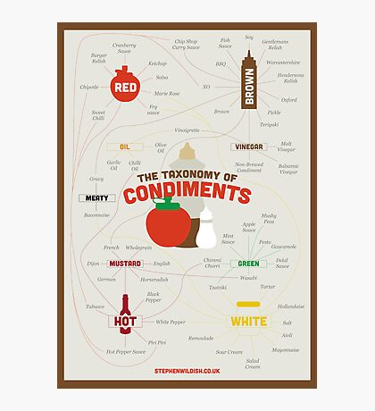 The Taxonomy of Condiments Photographic Print