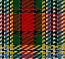 02628 Dundee #2 District Tartan Fabric Print Iphone Case by Detnecs2013