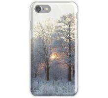 The first morning after the first snow... iPhone Case/Skin